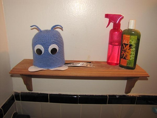 TP Cozy in Bathroom
